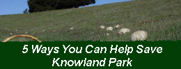 5 Ways You Can Help Save Knowland Park